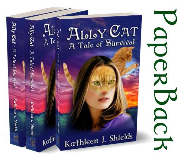 paperback-large
