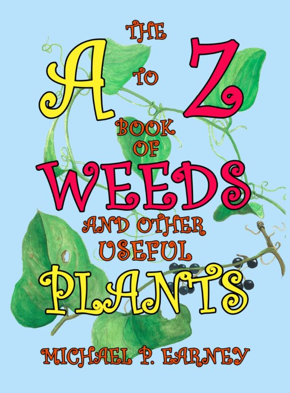 The A to Z Book of Weeds and Other Useful Plants