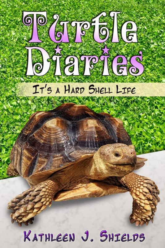 Turtle Diaries, It's a Hard Shell Life